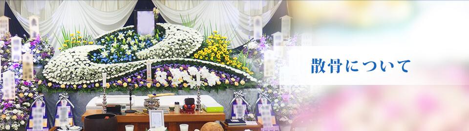 散骨について | 有限会社湘南寝台車 平塚・湘南・伊勢原での葬儀・直葬・家族葬のことならお任せください。